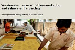 Wastewater reuse with bioremediation and rainwater harvesting